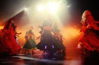 Festival de Danses Orientales de Liège 2012 (25)