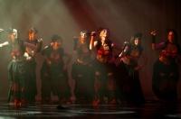 Festival de Danses Orientales de Liège 2012 (26)