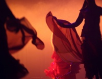 Festival de Danses Orientales de Liège 2012 (9)
