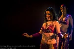 Festival de Danses Orientales de Liège 2016 (116)