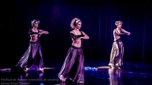 Festival de Danses Orientales de Liège 2016 (148)