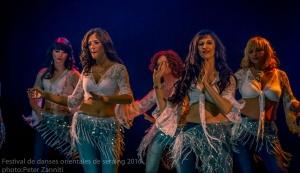 Festival de Danses Orientales de Liège 2016 (196)