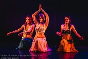 Festival de Danses Orientales de Liège 2016 (2)