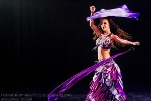 Festival de Danses Orientales de Liège 2016 (229)