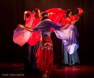 Festival de Danses Orientales de Liège 2016 (250)