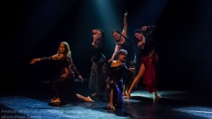 Festival de Danses Orientales de Liège 2016 (347)
