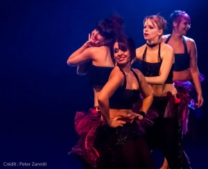 Festival-de-Danses-Orientales-de-Liège-2016-356