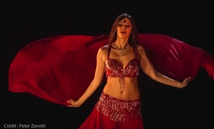 Festival-de-Danses-Orientales-de-Liège-2016-370