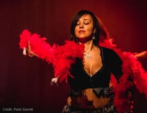 Festival-de-Danses-Orientales-de-Liège-2016-396