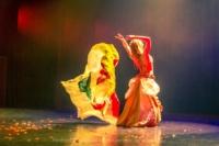 festival-de-danse-orientale-2017 (11)