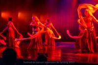 festival-de-danse-orientale-2017 (125)