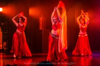 festival-de-danse-orientale-2017 (127)