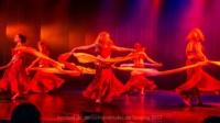 festival-de-danse-orientale-2017 (129)