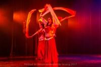festival-de-danse-orientale-2017 (131)