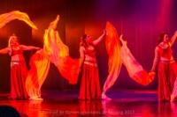 festival-de-danse-orientale-2017 (134)