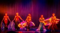 festival-de-danse-orientale-2017 (140)