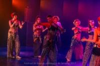 festival-de-danse-orientale-2017 (173)
