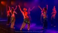 festival-de-danse-orientale-2017 (175)