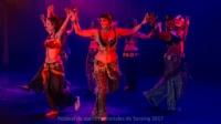 festival-de-danse-orientale-2017 (176)