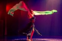 festival-de-danse-orientale-2017 (179)