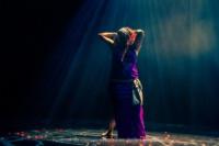 festival-de-danse-orientale-2017 (18)