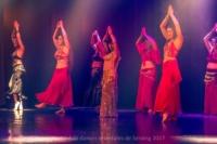 festival-de-danse-orientale-2017 (187)