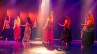 festival-de-danse-orientale-2017 (192)