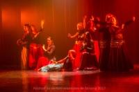 festival-de-danse-orientale-2017 (199)