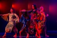 festival-de-danse-orientale-2017 (200)
