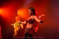 festival-de-danse-orientale-2017 (218)
