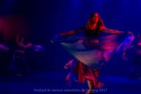 festival-de-danse-orientale-2017 (225)