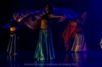 festival-de-danse-orientale-2017 (226)