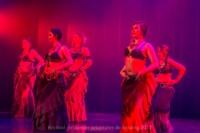festival-de-danse-orientale-2017 (229)