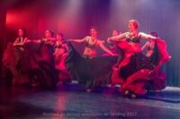 festival-de-danse-orientale-2017 (233)