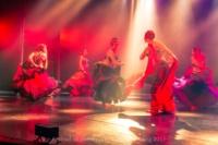 festival-de-danse-orientale-2017 (234)