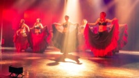 festival-de-danse-orientale-2017 (235)