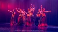 festival-de-danse-orientale-2017 (237)