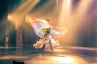 festival-de-danse-orientale-2017 (241)