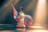 festival-de-danse-orientale-2017 (243)