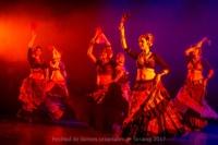 festival-de-danse-orientale-2017 (246)