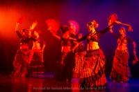 festival-de-danse-orientale-2017 (247)