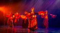 festival-de-danse-orientale-2017 (249)