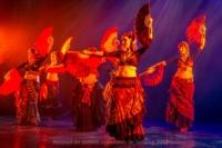 festival-de-danse-orientale-2017 (251)