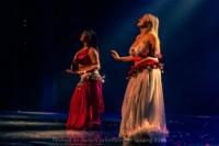 festival-de-danse-orientale-2017 (42)