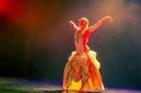 festival-de-danse-orientale-2017 (5)