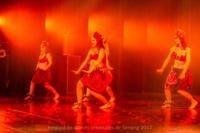festival-de-danse-orientale-2017 (63)