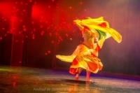 festival-de-danse-orientale-2017 (7)