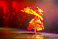 festival-de-danse-orientale-2017 (8)