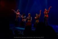 festival-de-danse-orientale-2017 (80)