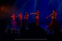 festival-de-danse-orientale-2017 (82)